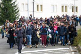 Мигрантов начала принимать Словения