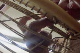 Плетёная мебель: как выживает вымирающее ремесло