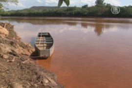 Разрушение дамб в Бразилии угрожает экосистеме