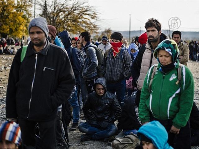Мигранты не хотят подозрений в терроризме