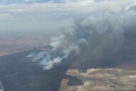 В Австралии начались пожары: есть жертвы