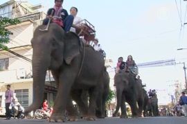 Парад слонов в Таиланде побил рекорд Азии