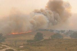 Пожары в Австралии растянулись на сотни километров