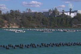 В Калифорнии открылся завод по опреснению воды