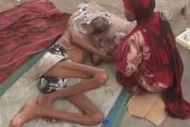 Гуманитарный кризис в Йемене: 2,3 млн переселенцев