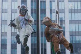 Обезьяна и овца моют окна в Токио