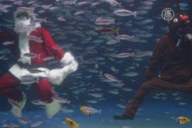 Санта и Рудольф устроили шоу в токийском аквариуме