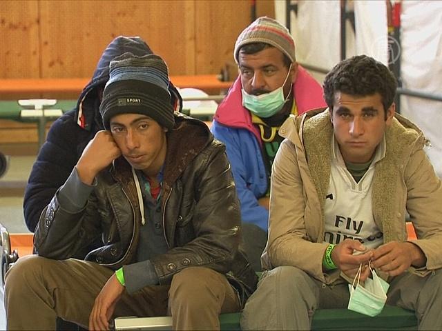 В Германию ежедневно прибывает до 2000 мигрантов