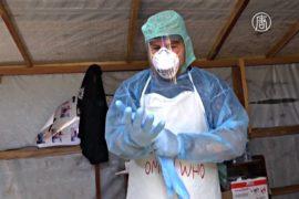 ВОЗ: Гвинея «свободна от Эболы»