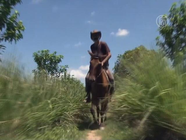 Туры верхом на лошади: новинка в Камбодже