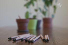 Исписанные карандаши дают жизнь растениям