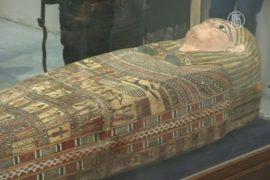 Каир: выставка возвращенных артефактов