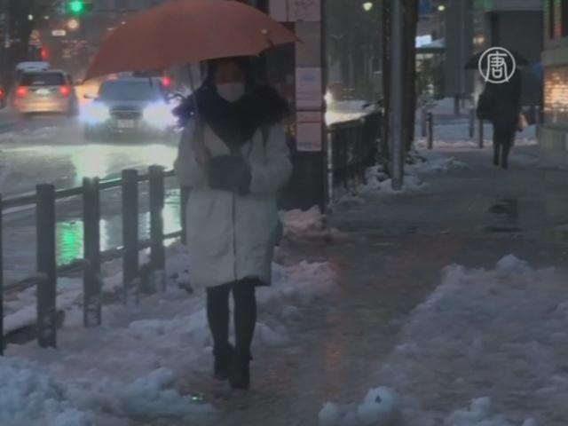 Первый снег в Токио вызвал коллапс