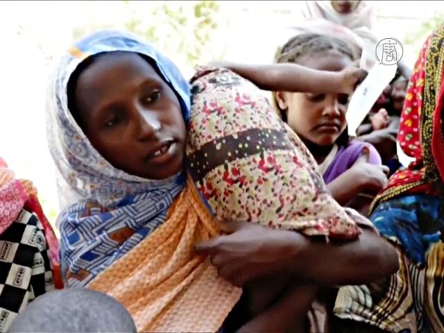 Дети в Эфиопии страдают от недоедания из-за засухи