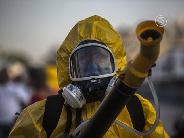 Перед карнавалом в Рио борются с вирусом Зика