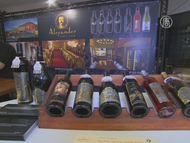 Израильтяне планируют стать ведущими виноделами