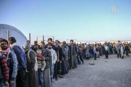 30 000 беженцев призывают Турцию открыть границу
