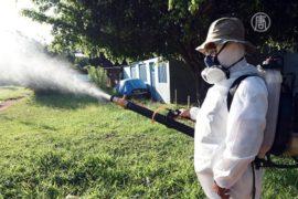 ВОЗ: ситуация с лихорадкой Зика может ухудшиться