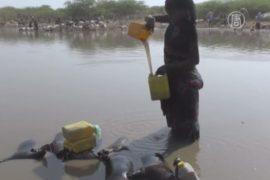 ООН: голод в Эфиопии усиливается