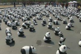 1600 панд из папье-маше путешествуют по Таиланду