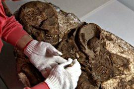 Найдена древняя окаменелость матери с ребёнком