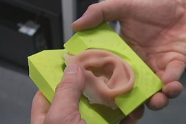 Австралия: уши печатают на 3D-принтере