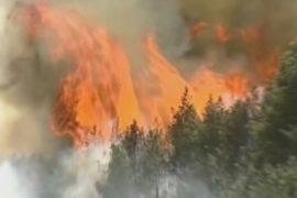 В Сибири начались лесные пожары