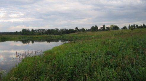Ярославль — выгодная зона для сделок с земельными участками