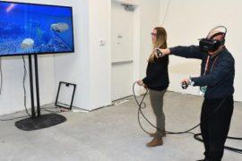 Виртуальный кинозал в Интернете