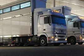 Доставка грузов в Санкт-Петербурге и области