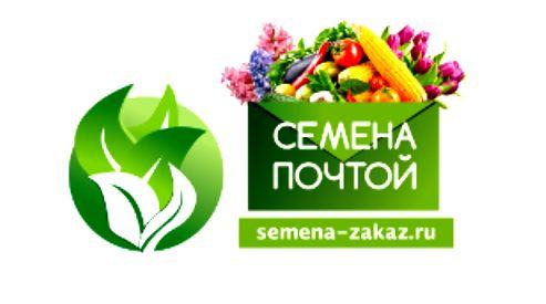 Самое время покупать хорошие семена