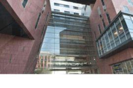 Передовое лечение меланомы в клинике Ассута по отзывам пациентов считается лучшим в Европе