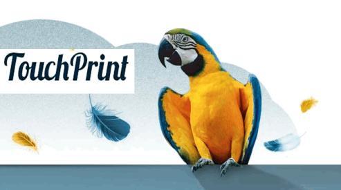 Что надо знать об интерьерной широкоформатной печати