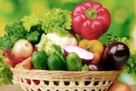 Познавательный журнал о здоровье