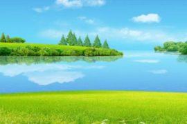 Что представляют собой экологические инженерные изыскания?