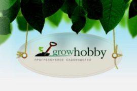 Светильники для растений: подари жизнь!