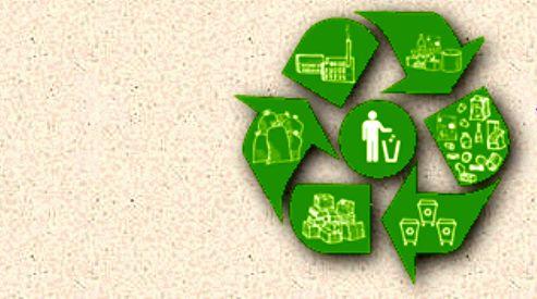 Прием вторсырья как локальное решение экологических проблем