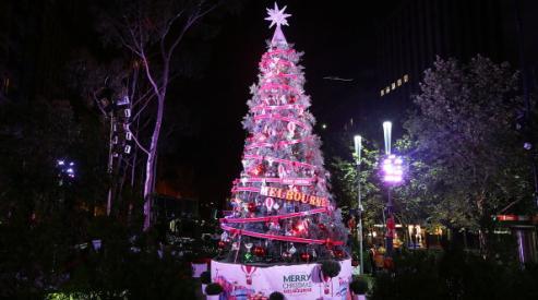 Как австралийцы побили рекорд по украшению елки?