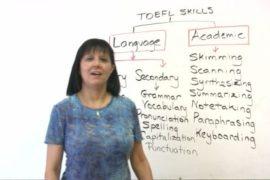 Что нужно знать и уметь для успешной сдачи TOEFL?