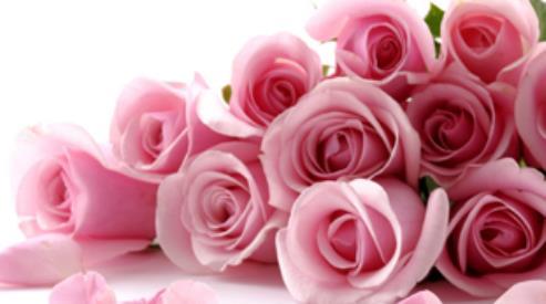 Цветы – самый романтичный подарок