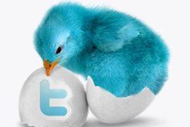 Как безопасно раскрутить Твиттер