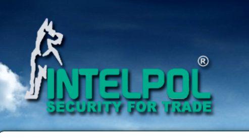 Интелпол – надёжные системы безопасности