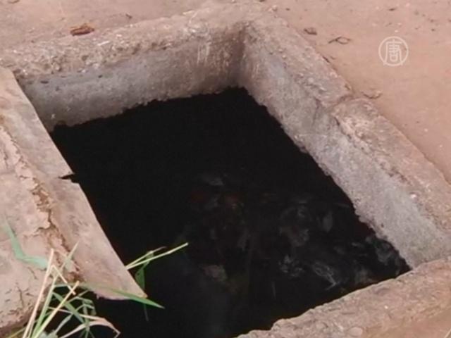 В ЦАР обнаружили массовую могилу мусульман