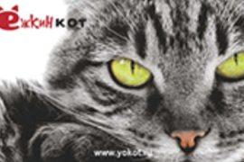 Зоосервис «Ёжкин кот»