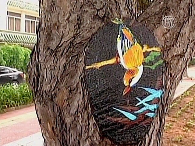 На курорте в Китае разрисовали дупла деревьев