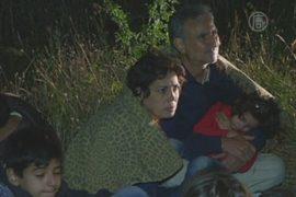 В Сербию проникает всё больше беженцев из Сирии